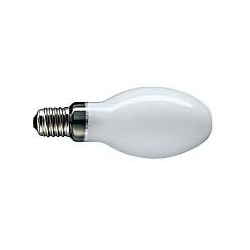 Mercury Blended Fluorescent (MBF)