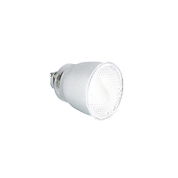 Compact Fluorescent - SGU10 Style