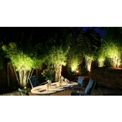 Garden And Pathway Exterior Lighting