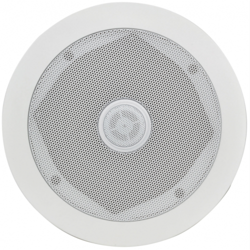 Ceiling and background speakers