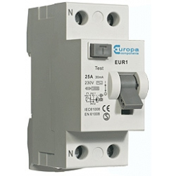 ECL EUR163.100/2 63amp 2Pole 100mA trip 10kA RCD 2 module